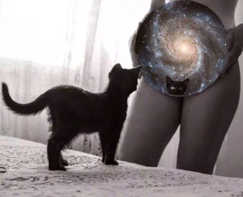 Morena Fortino - La chatte Universo