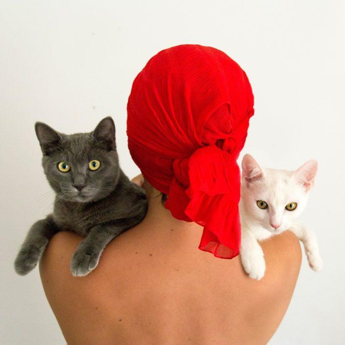 Morena Fortino - L'amore per i gatti